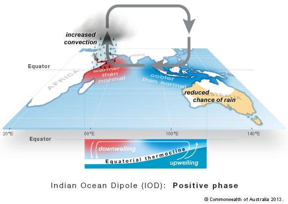 دوقطبی اقیانوس هند