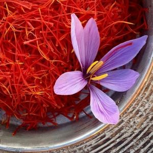 گل زعفرون