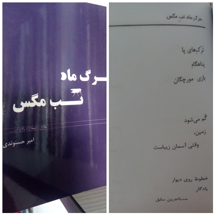 امیر حسنوندی.هایکو.سیاه قلم.1396