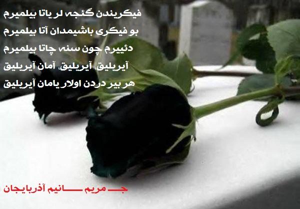 1556_13921018000555_photol.jpg