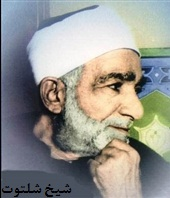 شیخ شلتوت