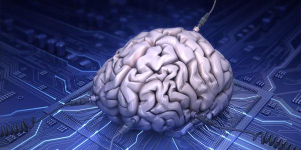 دانشمندان برای نخستین بار مغز انسان را به اینترنت متصل کردند