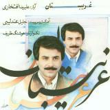 فیلمها و برنامه های تلویزیونی روی طاقچه ذهن کودکی - صفحة 13 2bvs_22-alirezaeftekhari-gharibestan-cd-(70)_thumb
