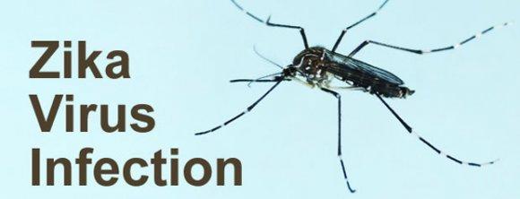 پنج چیز که باید از ویروس