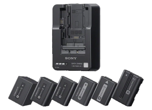 Sony BC-QM1 InfoLithium Battery Charger