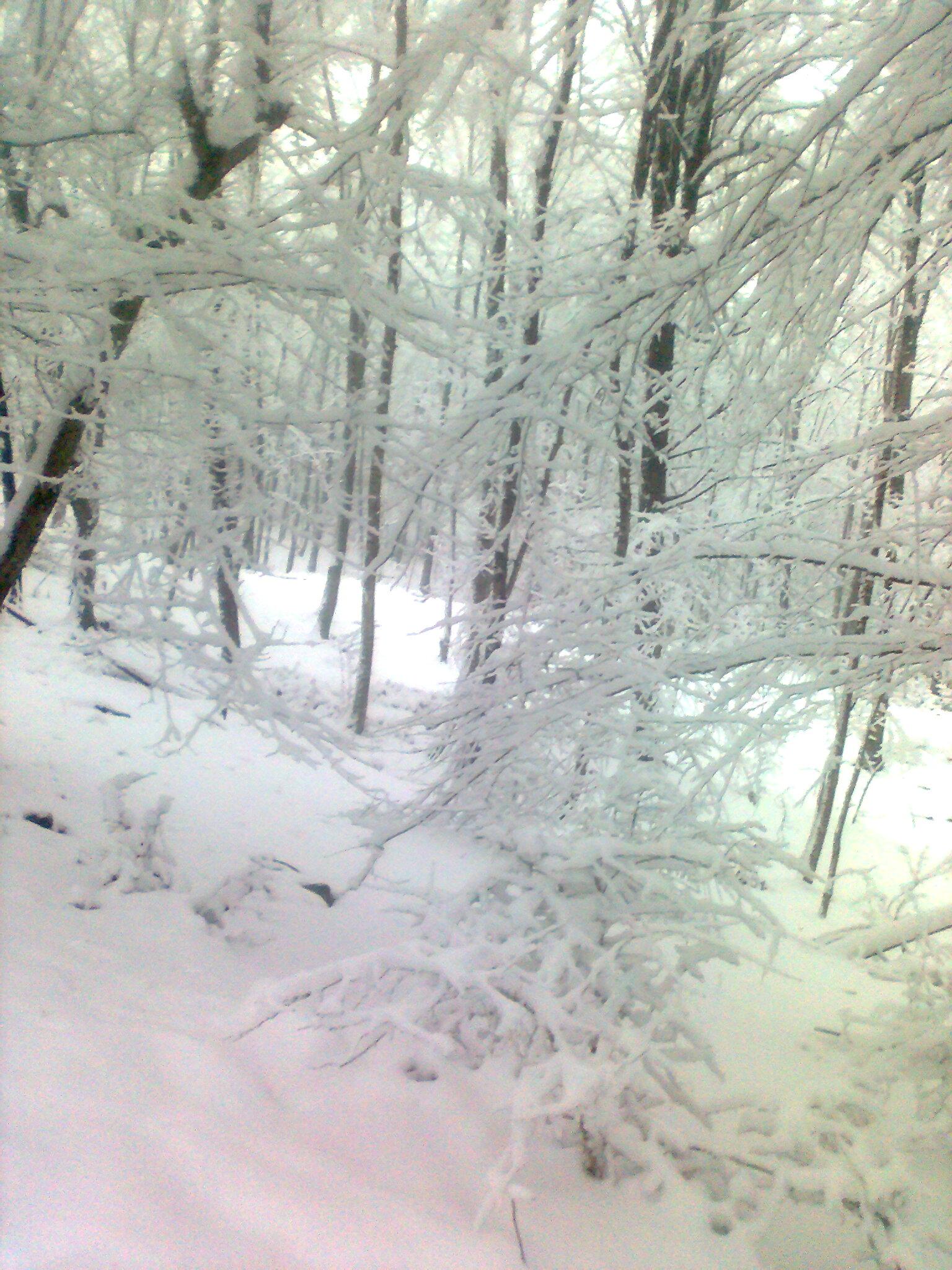 تصاویر زیا ودیدنی زمستان روستای جناسم