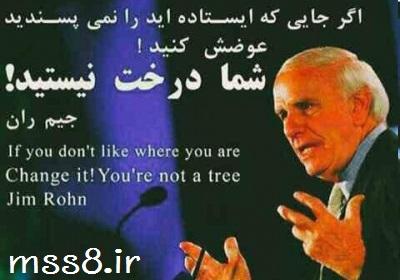 جیم ران : شما درخت نیستید