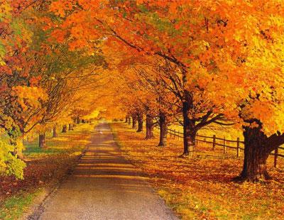 موضوع انشاء:فصل پاییز