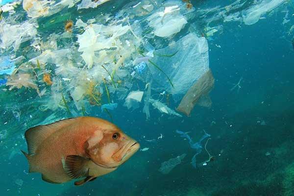 معضل آلودگی پلاستیکی جهان در سال ۲۰۴۰ به کجا خواهد رسید؟