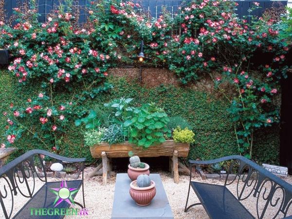 نمونه طراحی های باغ های کوچک