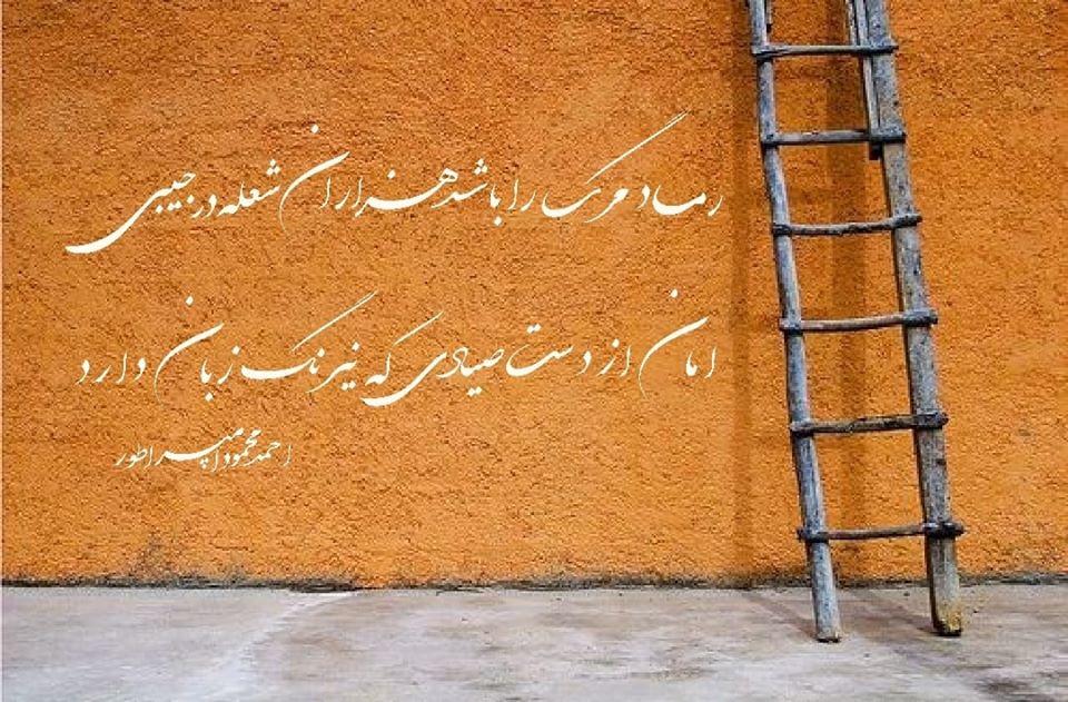 تک بیت های ناب و ماندگار از احمد محمود امپراطور شاعر جوان و کلاسیک سرا از کشور افغانستان