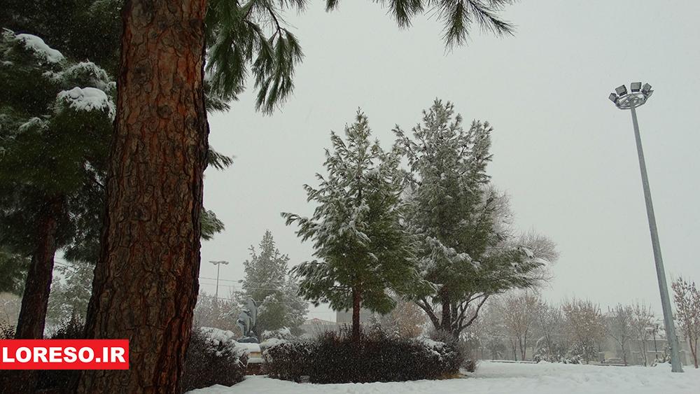 عکس: اسدالله محبی----الشتر در یک روز برفی