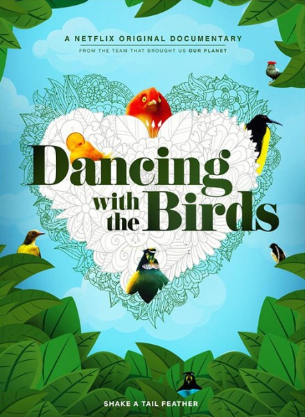 دانلود فیلم Dancing with the Birds 2019