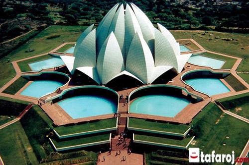 سفر به هند، نیلوفر آبی هند