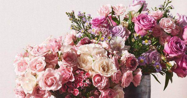 گل برای پروفایل اینستا