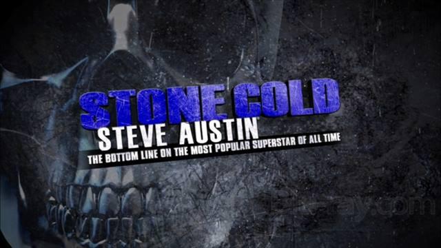 استون کلد استیو آستین