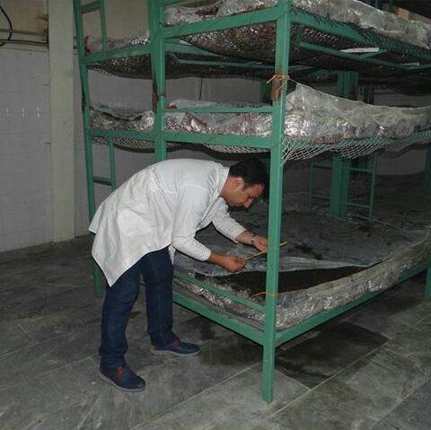 نظارت سالن مرکز تحقیقات و اموزش توسط مهندس یاورزاده