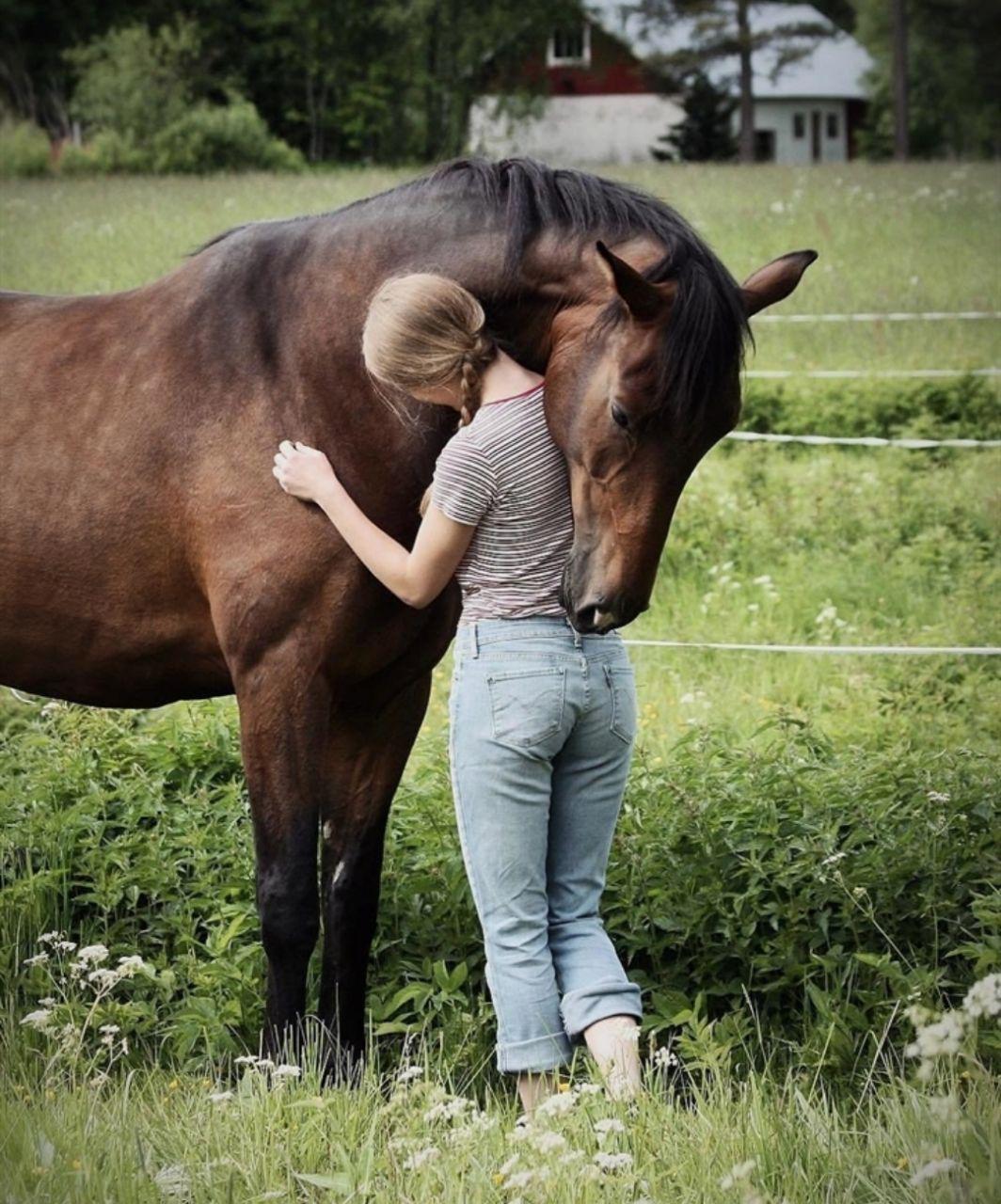 عکس دختر و اسب