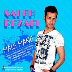 buaa_saleh-rezaei-male-mane-300x300.jpg
