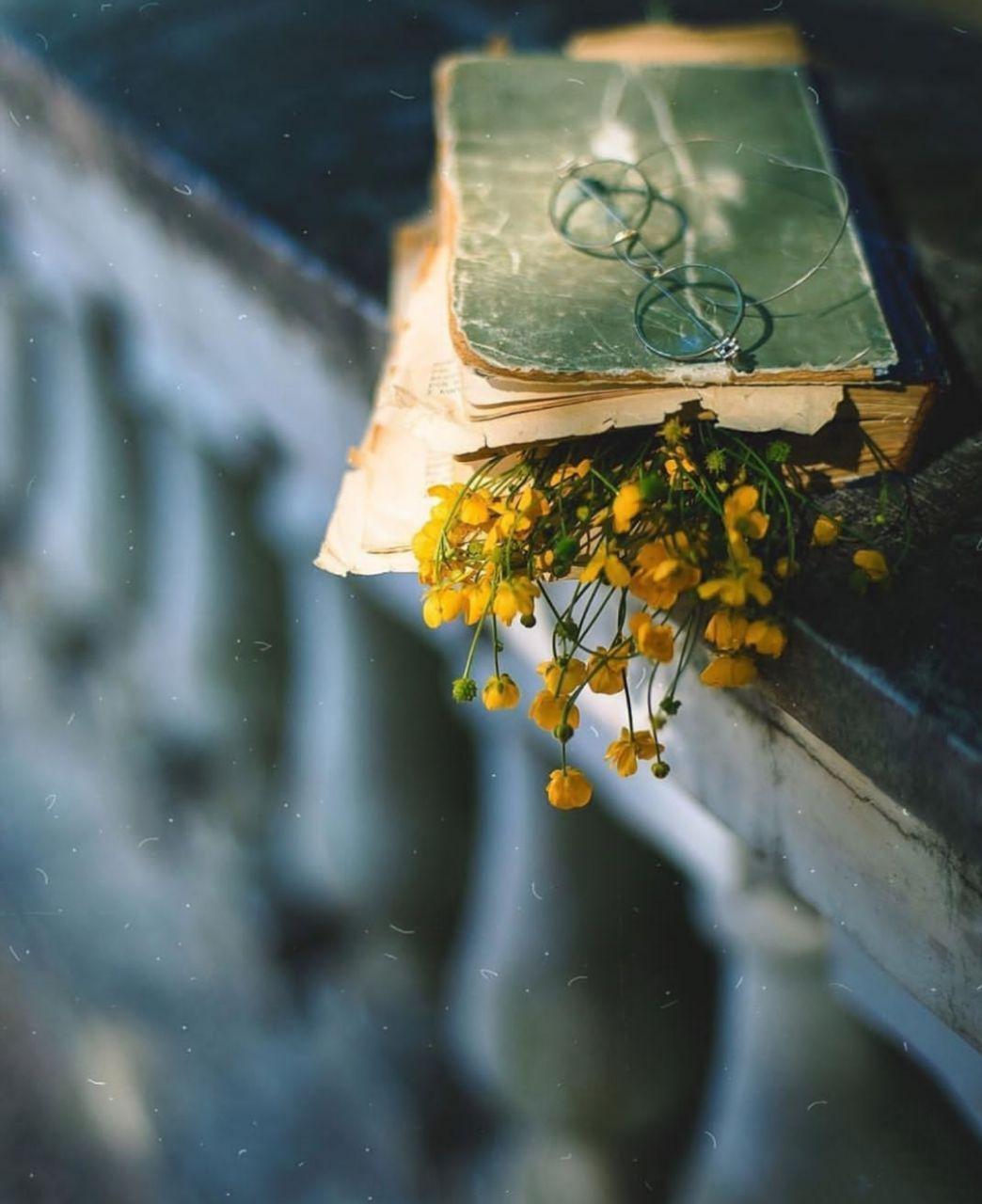 عکس زیبا از کتاب