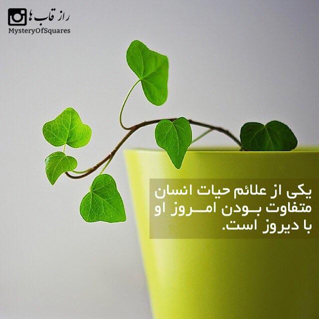 عکس نوشته 2