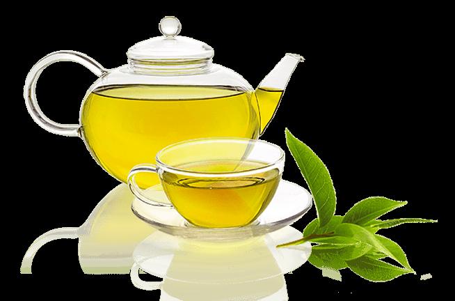 چای سبز با نعناع شیرین شده با استویا درمان دیابت درمان قند خون بدون کالری لاغر کننده چربی سوز steviya
