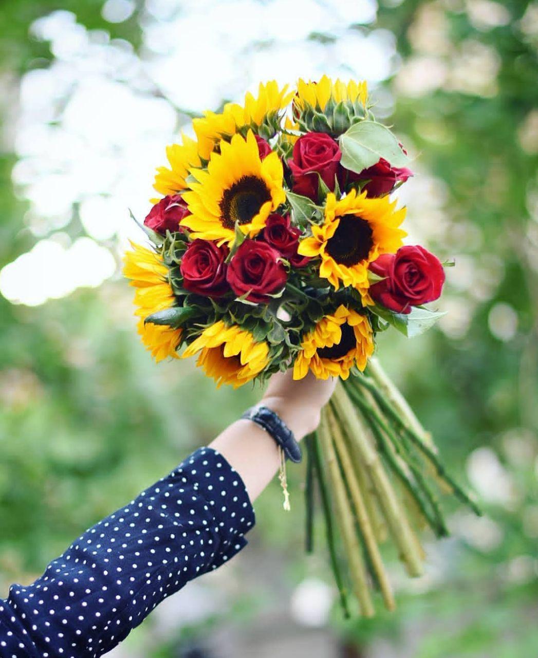 عکس گلهای زیبا