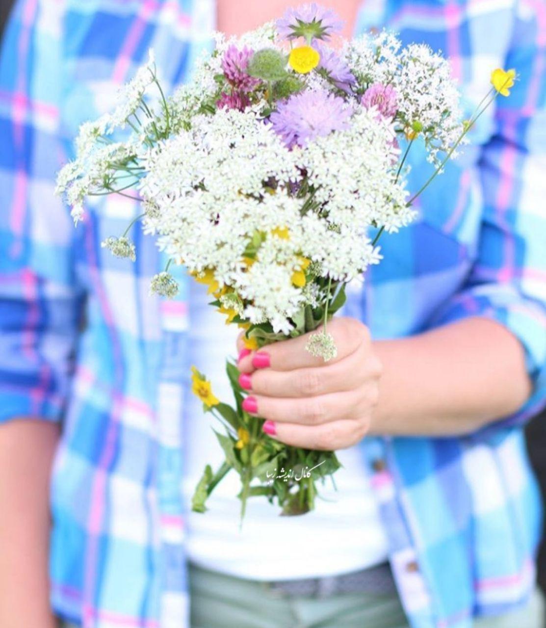 عکس تقدیم گل