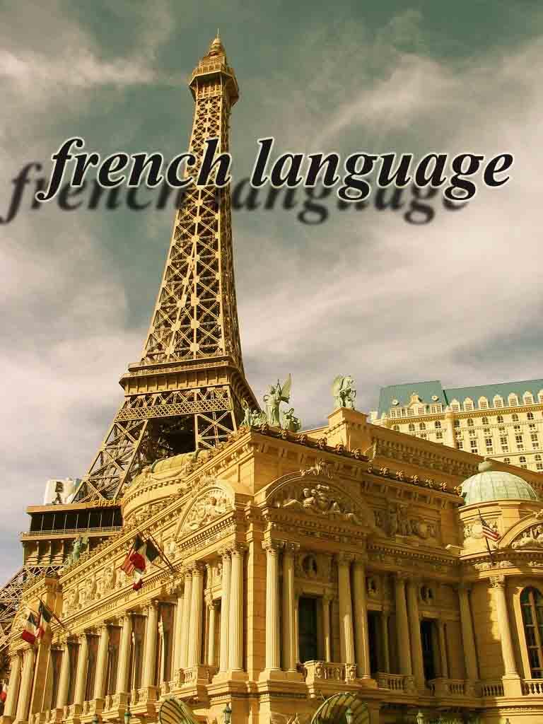 آموزش زبان فرانسه به صورت خود آموز  IN FLIGHT FRENCH