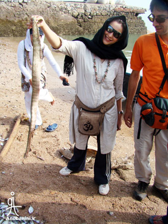 Tourist Attractions of the Island - ماهیگیری در هرمز Fishing in Hormuz