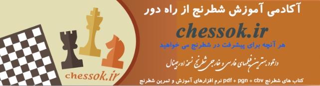 سایت آکادمی آموزش شطرنج ازراه دور (chessok.ir)