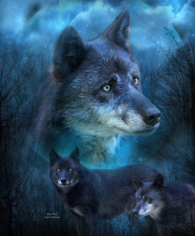 [عکس: erxx_beautiful-wolf-painting-2.jpg]