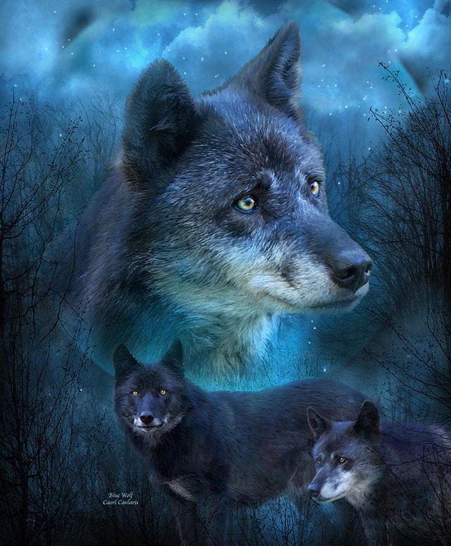 [عکس: erxx_beautiful-wolf-painting-2.jpg]