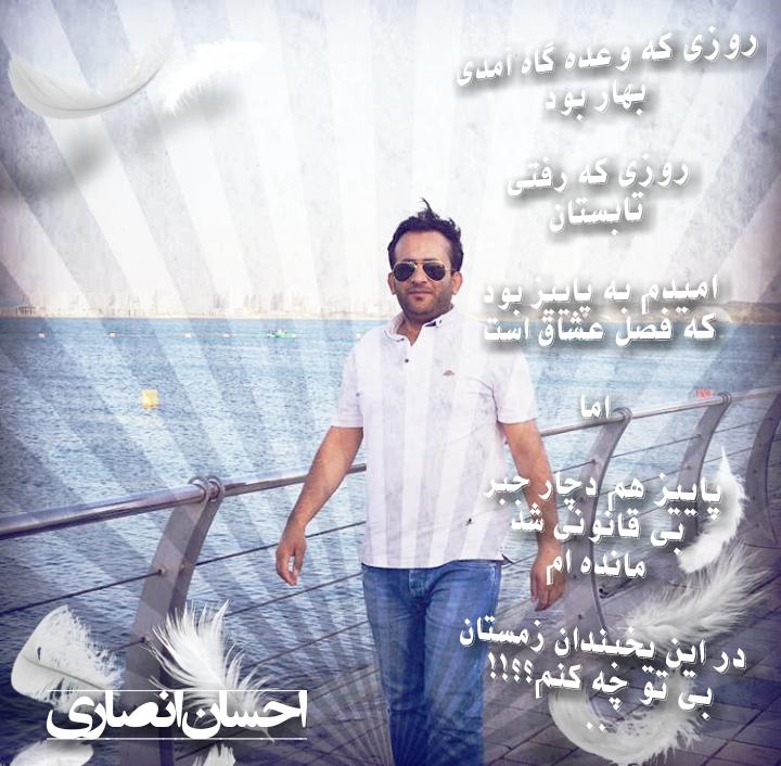 احسان انصاری.سیاه قلم.1396