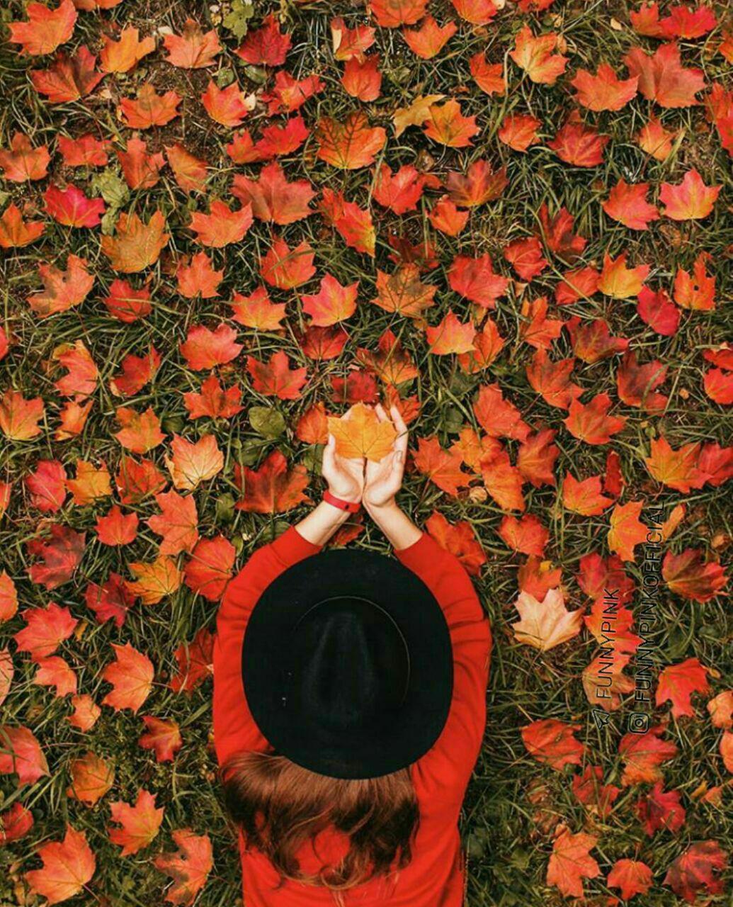 شعر پاییز