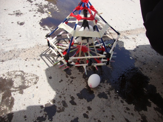 نجات تخم مرغ - زانست