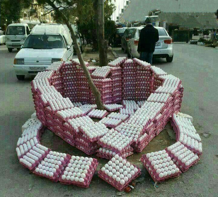 تحم مرغ فروش عاشق