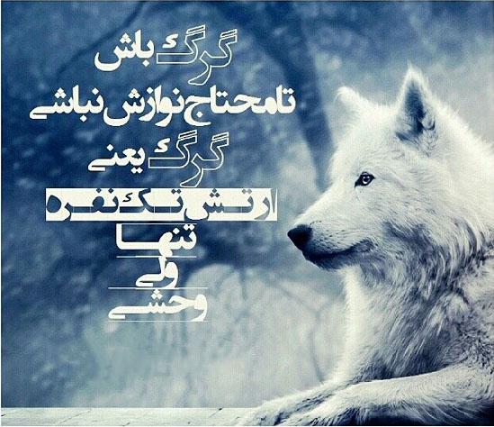 تلگرام فارسی حدید