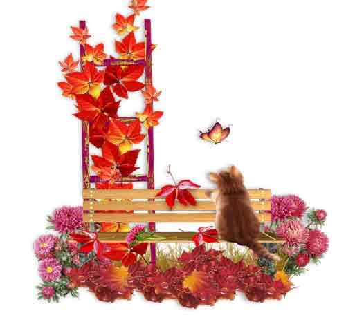 دانلود تم خزان و گربه  با فرمت PNG با کیفیت بالا جهت استفاده در اتلیه