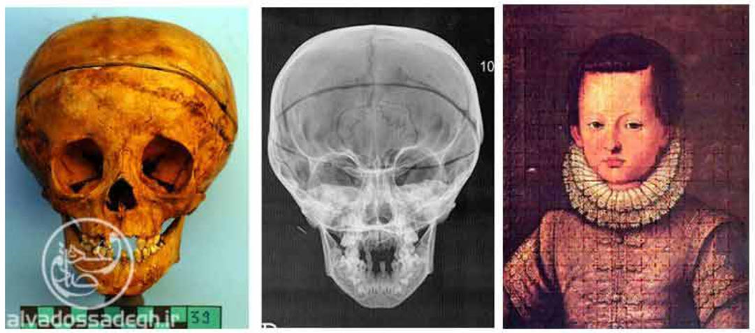 نقد تکامل داروین انسان سا