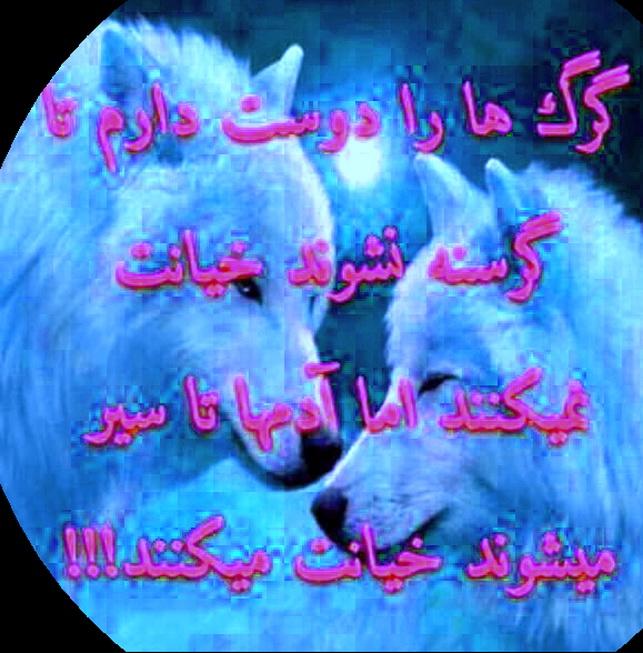i6hs_14455676601879512.jpg