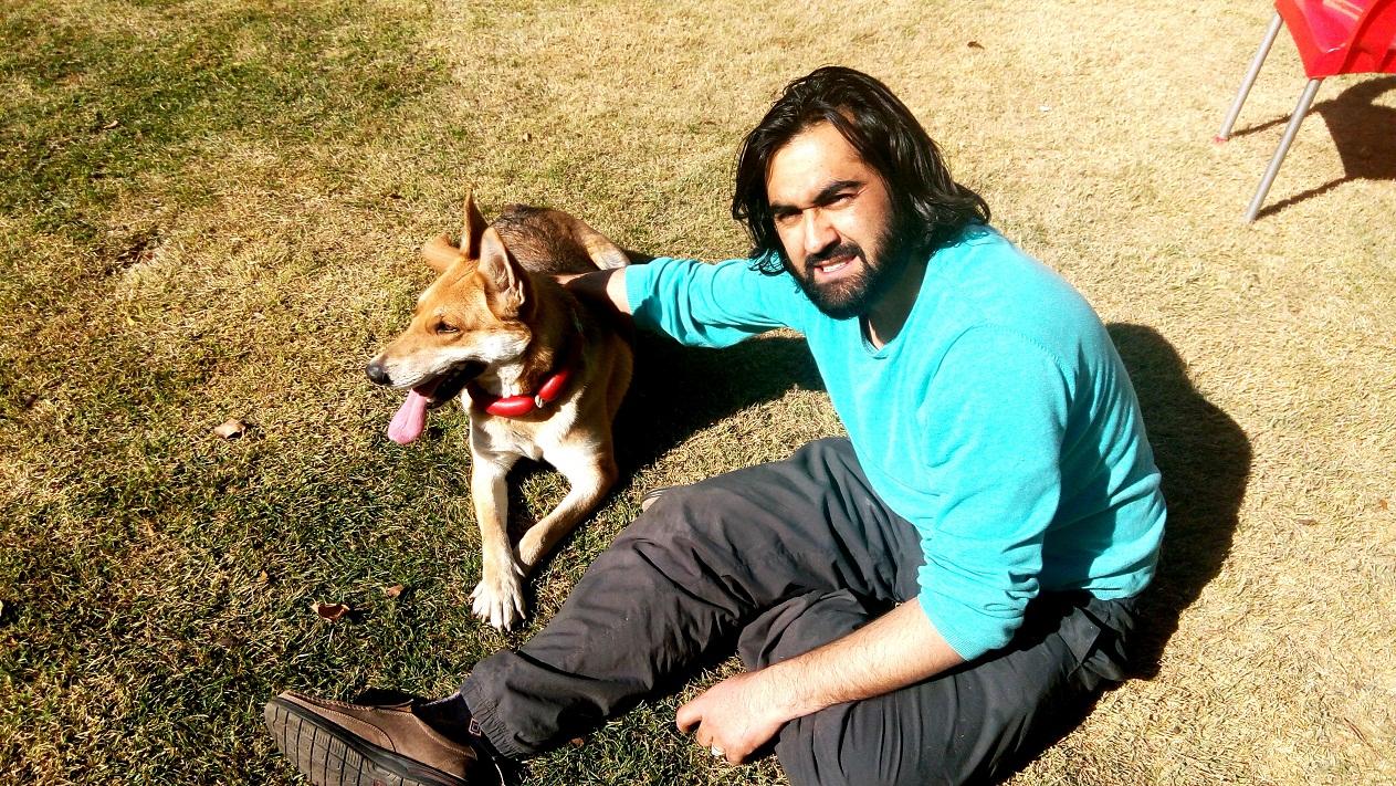 گرگ سگ وفاردار احمد محمود امپراطور بنام لیمو مونس تصاویر پاییزی