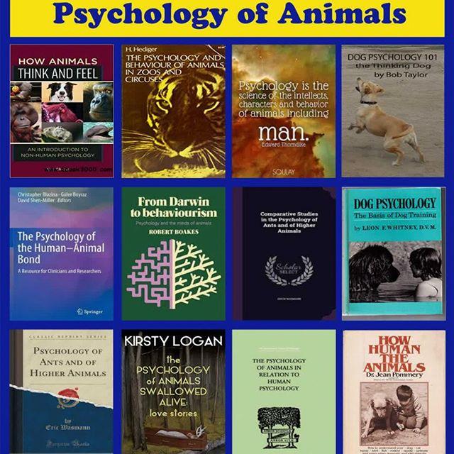 سایکولوژی حیوانات (روانشناسی حیوانات !)