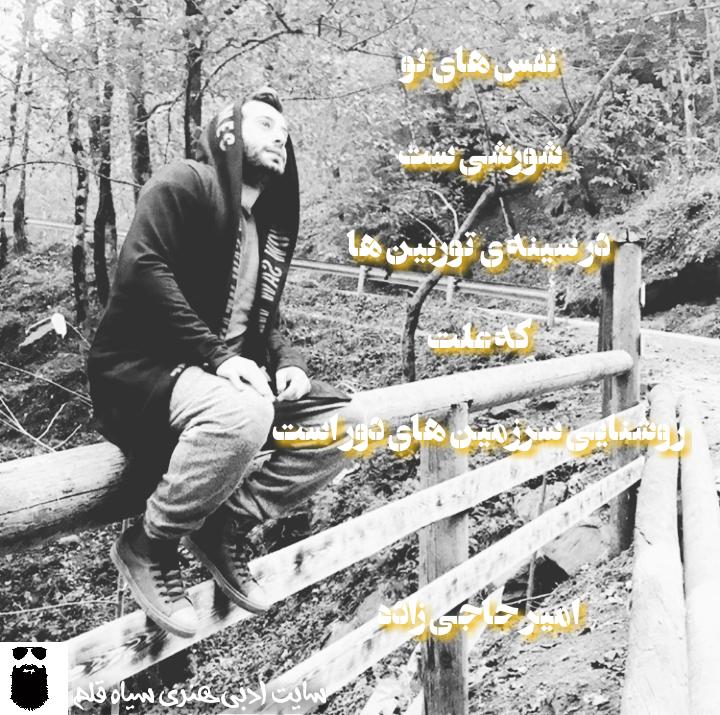 امیردحاجی زاده.سیاه قلم.1396.2017