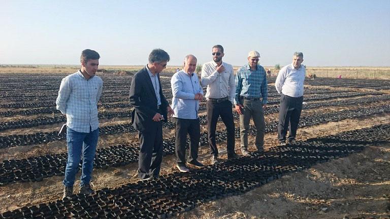 بازدید مدیر کل منابع طبیعی و آبخیزداری استان گلستان از پروژه های آبخیزداری و مرتعی شهرستان گنبد