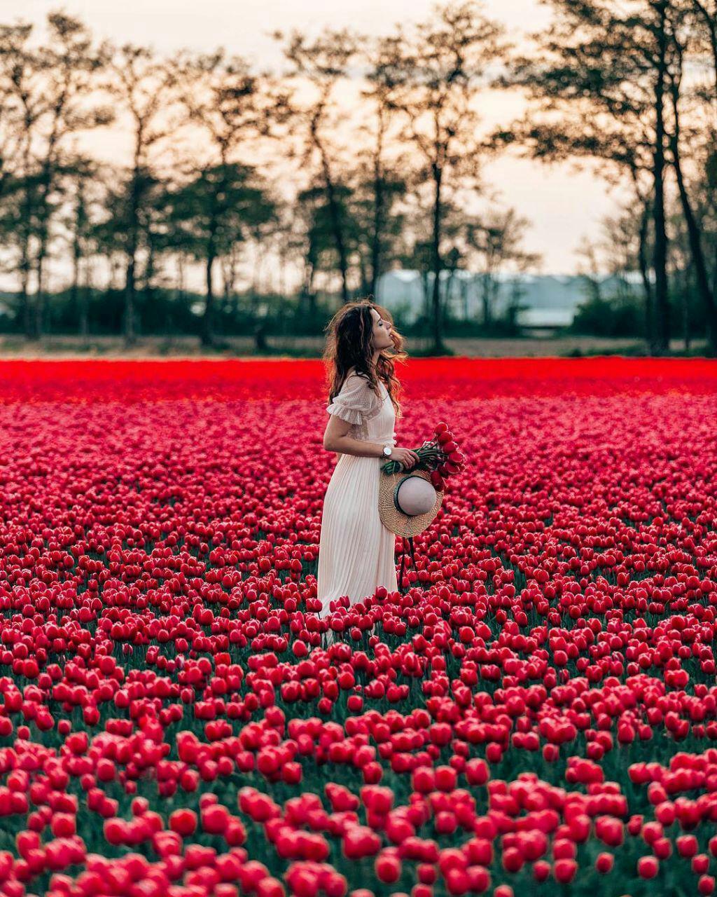 عکس زیبا دختر در میان گلها