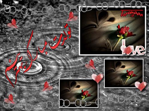 lw_tarahaan_bahman_masoud.jpg