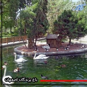 باغ-پرندگان