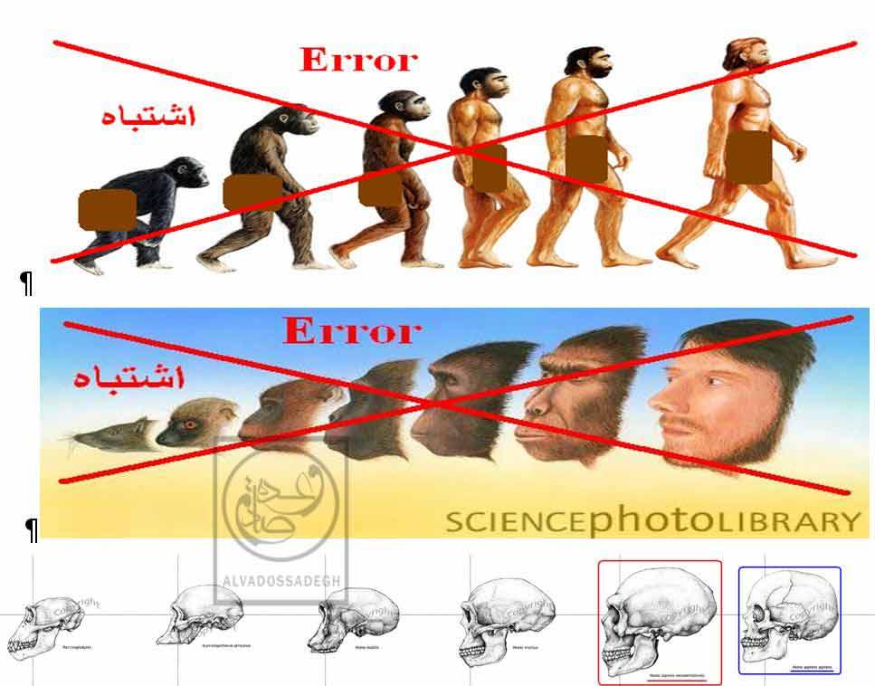 رد علمی نظریه تکامل