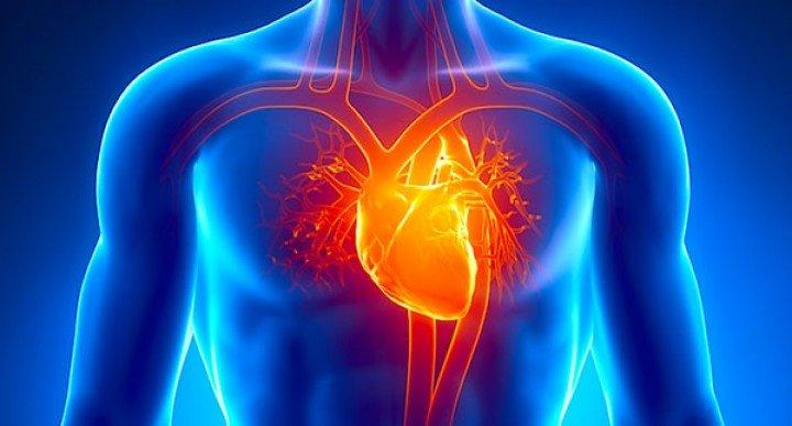 عسل و بیماری های قلبی